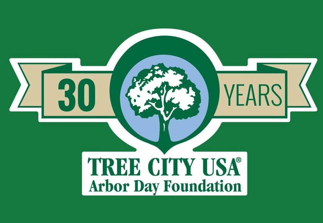 Tree city 30 years