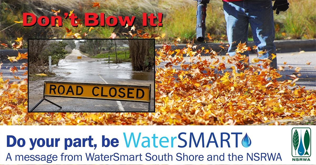 Dont Blow It leaves in storm drain graphic w WS banner
