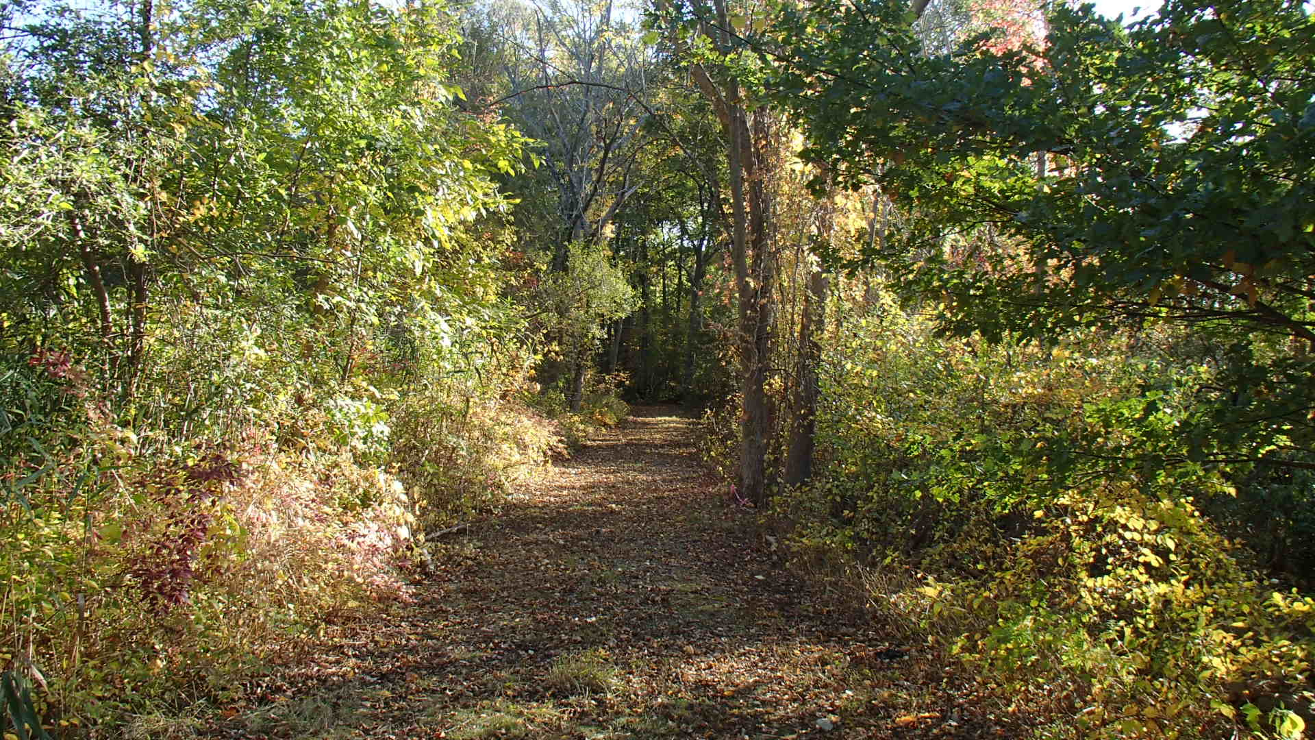 Hingham Trails