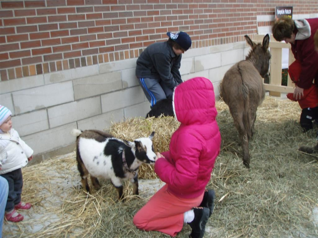 Petting zoo was provided by Penniman Hill Farm